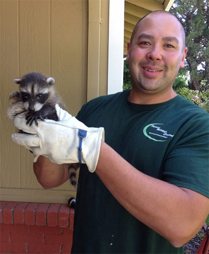 Animal Control & Removal